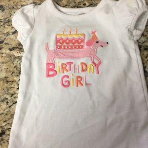Gymboree birthday girl shirt worn once! 2T